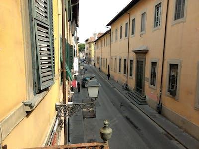 Wohnung zur Miete von 18 Juli 2018 (Via Giosuè Carducci, Pisa)