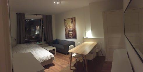 Habitación de alquiler desde 01 ago. 2018 (Jonker Fransstraat, Rotterdam)