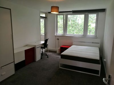 Chambre privée à partir du 16 févr. 2019 (King Square, London)