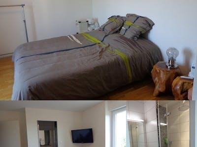 Private room for rent from 05 Jul 2020 (Chemin de la Haie la Botte, Messein)