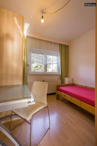 Room for rent from 06 Jan 2019 (Triestinggasse, Vienna)