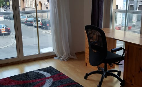 Room for rent from 08 Feb 2018 till 31 Jan 2019 (Reinprechtsdorfer Straße, Vienna)