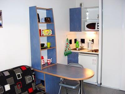 Apartamento para alugar desde 19 jul 2018 (Avenue Galline, Villeurbanne)