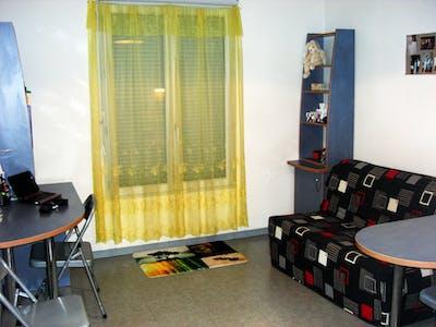 Apartment for rent from 17 Jul 2019 (Avenue Galline, Villeurbanne)