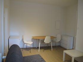 Apartamento para alugar desde 01 mar 2019 (Rue de Salm, Strasbourg)
