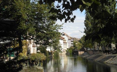 Studio te huur vanaf 01 nov. 2018 (Quai de la Bruche, Strasbourg)