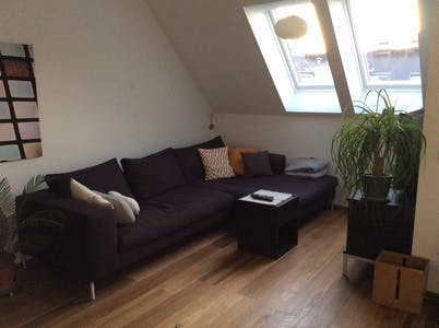 Private room for rent from 16 Aug 2019 (Goldschlagstraße, Wien)
