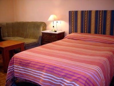 Habitación privada de alquiler desde 01 ene. 2019 (Avenida de los Maristas, Salamanca)