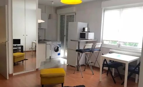 Apartment for rent from 01 Jul 2018 (Boulevard Clemenceau, Strasbourg)