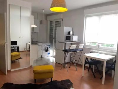 Apartment for rent from 01 Oct 2017  (Boulevard Clemenceau, Strasbourg)