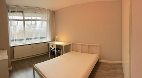 Private room for rent from 01 May 2019 (Everaertstraat, Rotterdam)