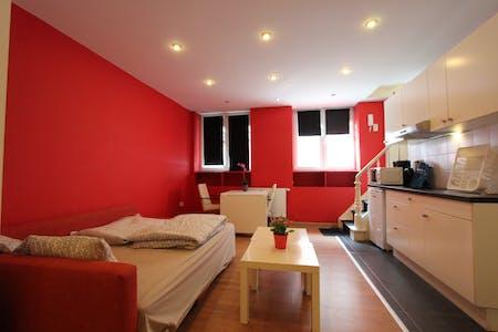 Studio-Apartment zur Miete ab 06 Apr. 2020 (John Waterloo Wilsonstraat, Brussels)