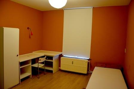 WG-Zimmer zur Miete ab 16 Juli 2020 (Rue de la Constitution, Schaerbeek)
