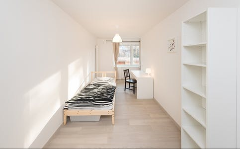 Room for rent from 01 Aug 2018 (Grünwalder Straße, München)
