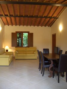 Apartment for rent from 29 Apr 2017  (Via Fiorentina, Siena)