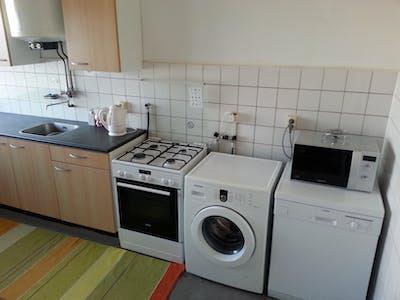 Appartement à partir du 01 nov. 2018 (Arthur van Schendelplein, Delft)