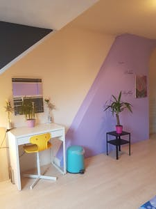 Private room for rent from 01 Jan 2020 (Flakkeesestraat, Rotterdam)