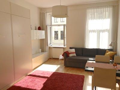 Apartment for rent from 06 Jan 2020 (Spittelbreitengasse, Vienna)