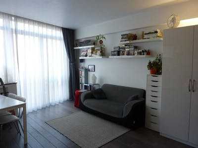 Apartment for rent from 01 Jan 2019 (Capouilletstraat, Saint-Gilles)