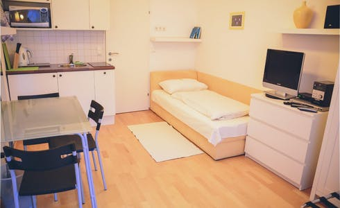 Studio for rent from 20 Nov 2017  (Miesbachgasse, Vienna)