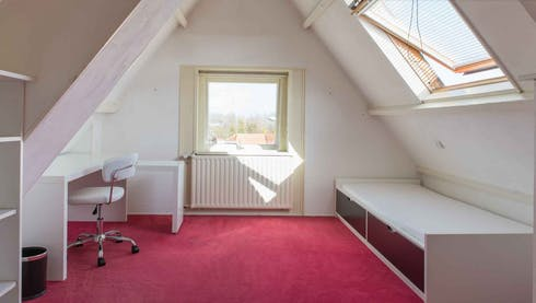 Room for rent from 01 Jul 2020 (Kadoelenweg, Amsterdam)