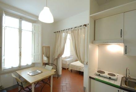 整套公寓租从02 8月 2018 (Via del Giglio, Firenze)
