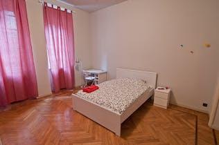 Habitación privada de alquiler desde 21 ene. 2019 (Via Pietro Bagetti, Torino)