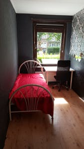 Private room for rent from 09 Jul 2020 (Van Assendelftstraat, Delft)