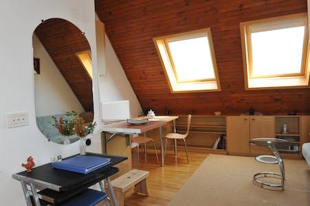 Studio-Apartment zur Miete ab 01 Aug. 2020 (Reboljeva ulica, Trzin)