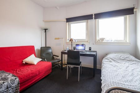 Private room for rent from 01 Aug 2020 (Van Alkemadelaan, The Hague)