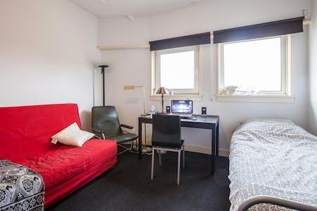 Habitación privada de alquiler desde 02 jul. 2019 (Van Alkemadelaan, The Hague)