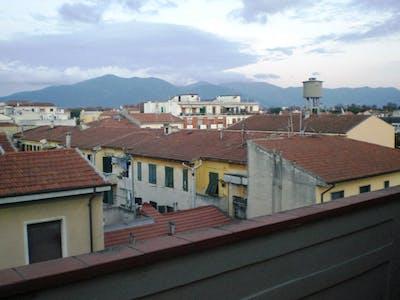 Habitación de alquiler desde 12 Feb 2018  (Via Filippo Corridoni, Pisa)