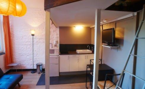 单间公寓租从17 1月 2018 (Rue Barthélémy Delespaul, Lille)