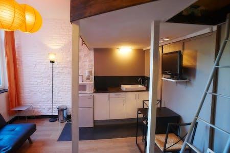 Estudio  de alquiler desde 21 Jul 2019 (Rue Barthélémy Delespaul, Lille)