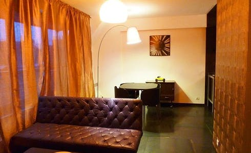 Apartment for rent from 17 Jan 2018 (Rue de Jemmapes, Lille)