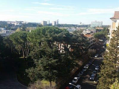 Private room for rent from 19 Nov 2019 (Via Luigi Lilio, Città metropolitana di Roma Capitale)