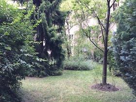 Room for rent from 30 Jun 2018  (Bennogasse, Vienna)
