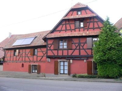 Haus zur Miete ab 26 Feb. 2020 (Rue d'Olwisheim, Berstett)