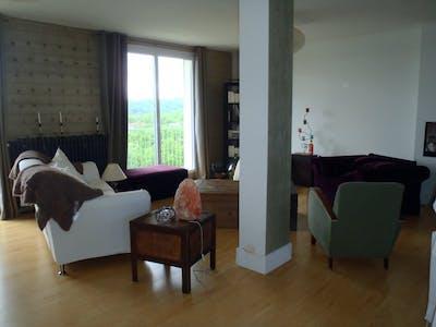 整套公寓租从25 3月 2019 (Rue de la Digue, Toulouse)