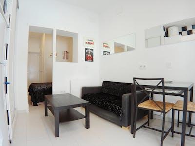 Studio for rent from 01 Jul 2020 (Calle Rodrigo Uhagón, Madrid)
