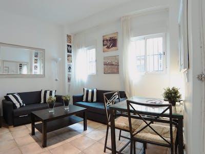 Apartment for rent from 01 Jul 2020 (Calle de Alvarado, Madrid)