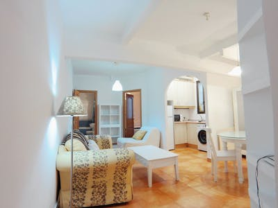 Apartment for rent from 22 Dec 2019 (Calle de Sagasta, Madrid)