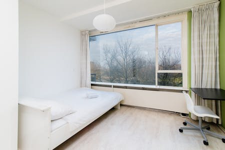 Private room for rent from 16 Aug 2020 (Livingstonelaan, Utrecht)