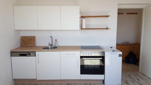 整套公寓租从26 Jun 2019 (Johann-Nestroy-Gasse, Neunkirchen)