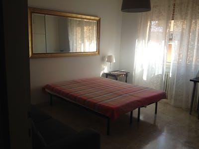 Room for rent from 20 Aug 2017  (Via Giuseppe Montanelli, Pisa)
