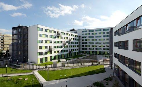 Stanze in affitto a partire dal 01 mar 2018 (Adelheid-Popp-Gasse, Vienna)