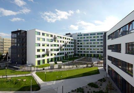 Apartamento de alquiler desde 01 jun. 2019 (Adelheid-Popp-Gasse, Vienna)