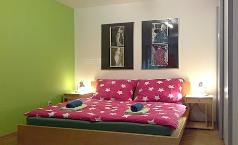Room for rent from 01 Jul 2018 (Potrčeva ulica, Ljubljana)