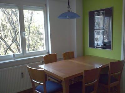 Room for rent from 01 Aug 2018 (Potrčeva ulica, Ljubljana)