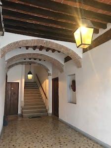 共用的房间租从18 2月 2019 (Piazza Francesco Carrara, Pisa)